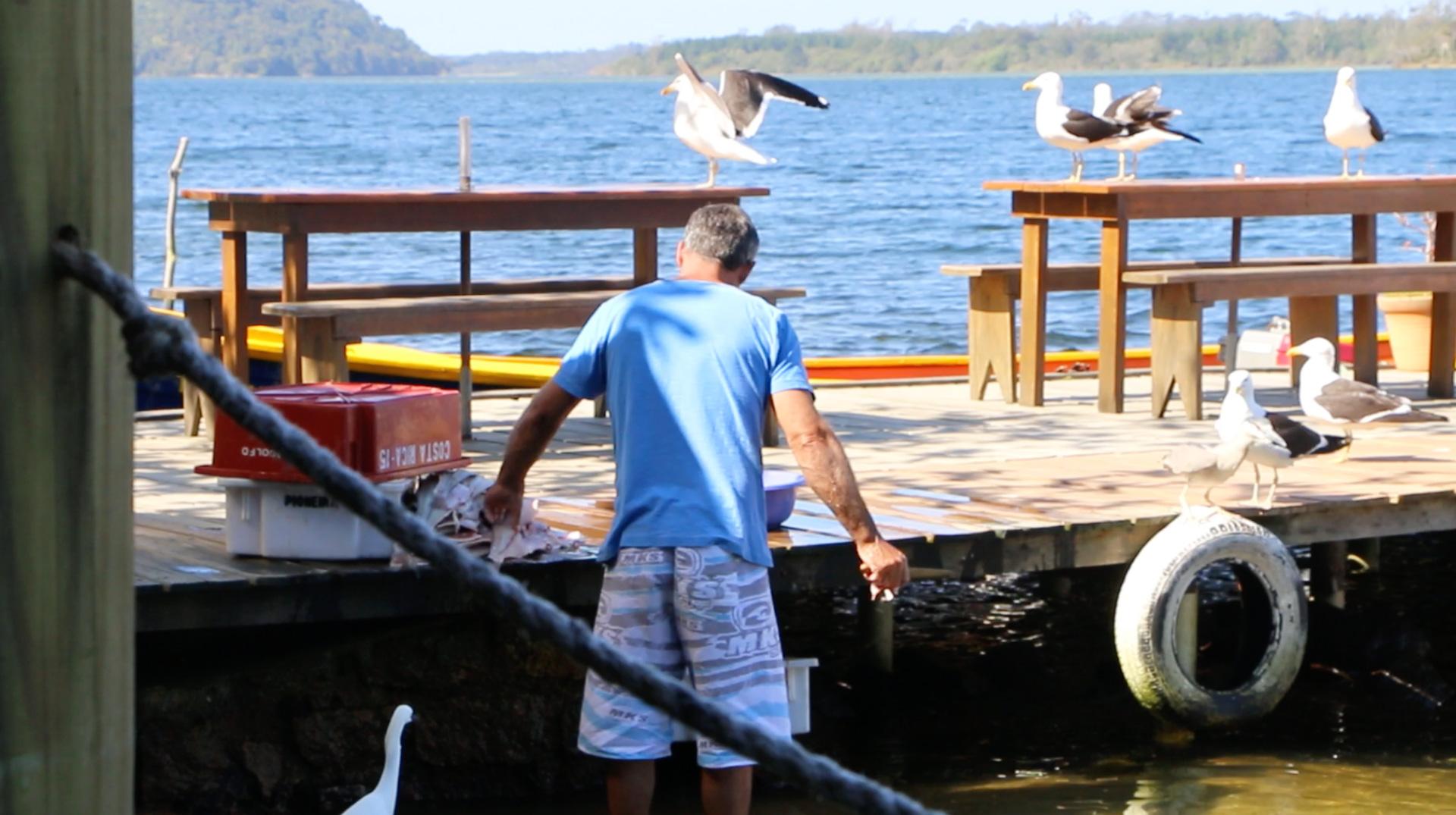 fisherman-gutting-fish-florianopolis