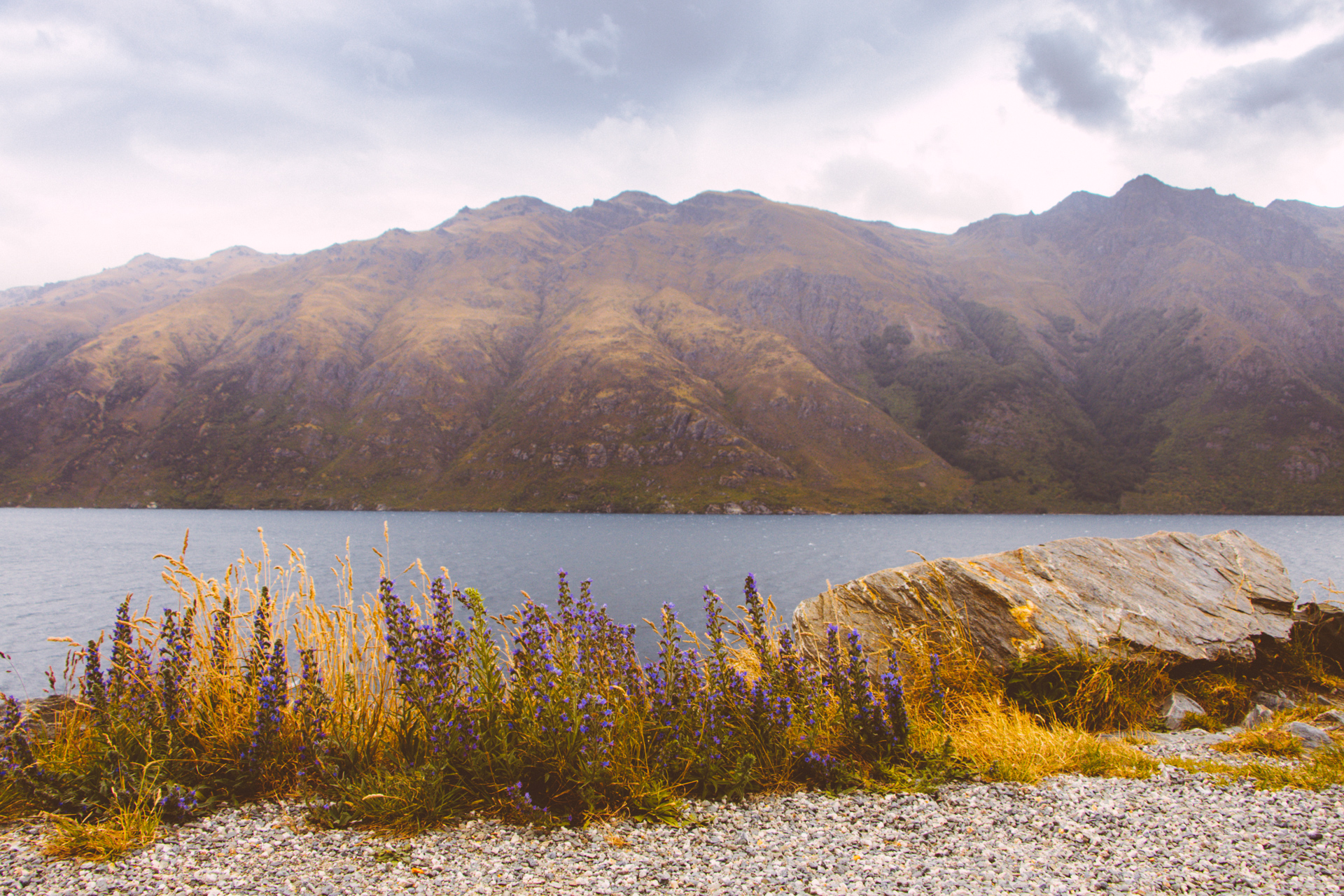 Queenstown Lake and Mountains