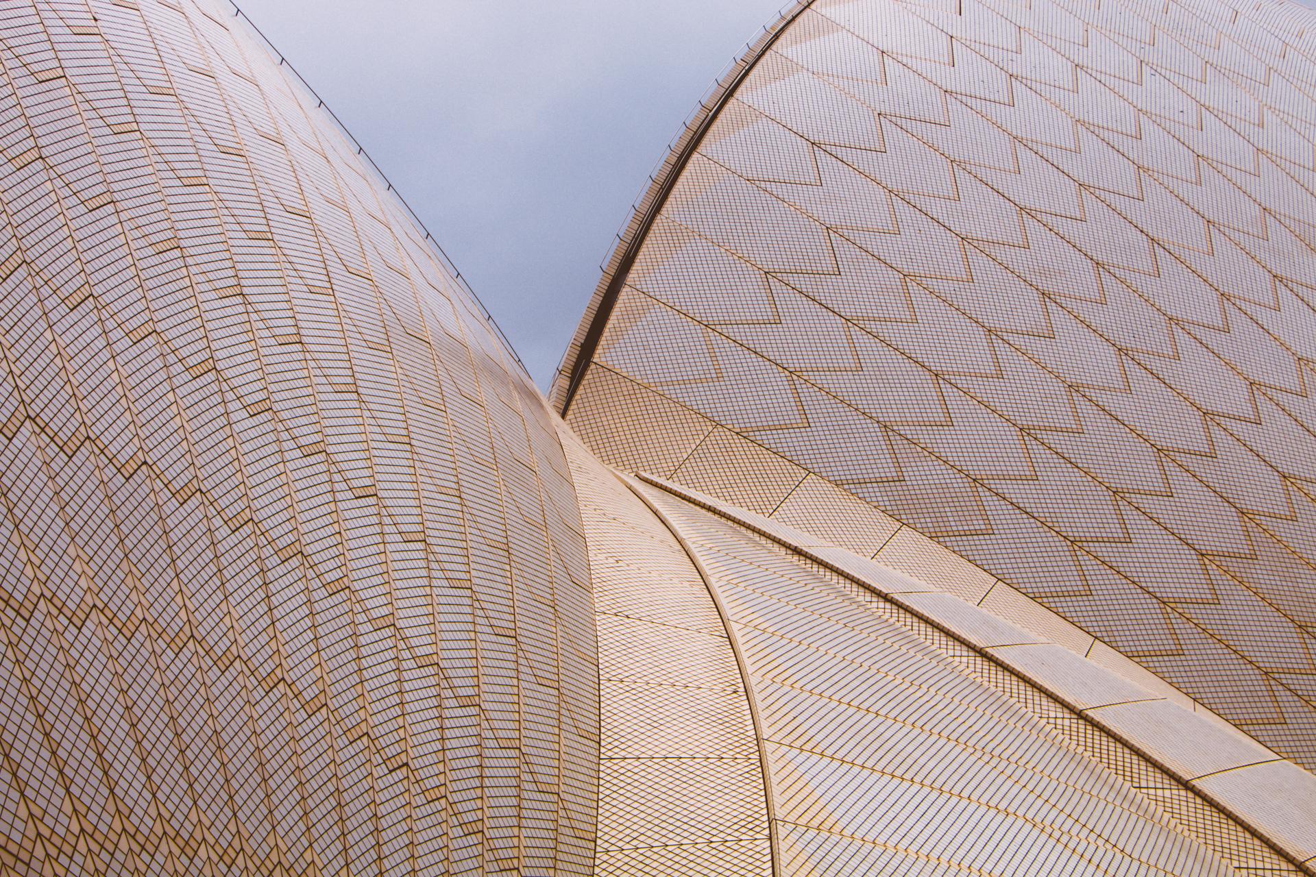 Sydney Opera House Closeup texture